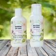 Šampon in balzam za normalne lase