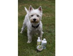 naravni izdelki za pse