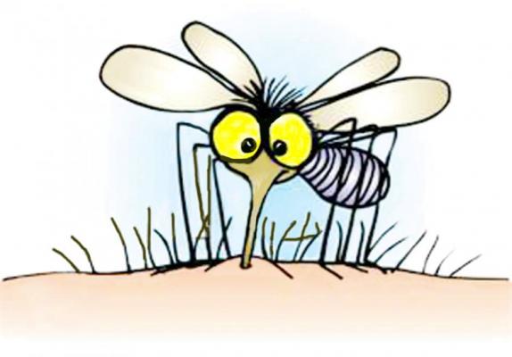 Čisto naraven sprej proti komarjem, ki deluje!